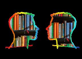 Una mirada al estudio de la formación de bibliotecólogos en América Latina y el Caribe